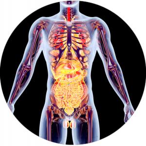 3d-health-areas-terapeuticas